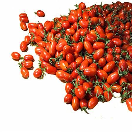 T01溫室玉女小番茄4盒裝一箱(4台斤)
