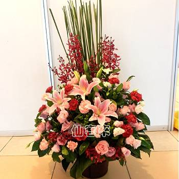 【A-302】祝賀藝術盆花開幕喬遷榮陞會場佈置