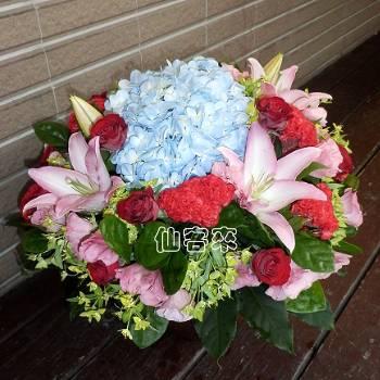 【A-201】祝賀藝術盆花開幕喬遷榮陞會場佈置