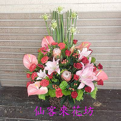 【A-301】母親節盆花感恩盆花康乃馨盆花