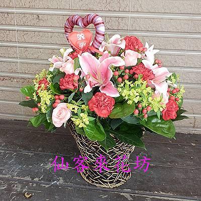 【A-302】母親節盆花感恩盆花康乃馨盆花