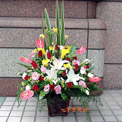 【A-065】祝賀藝術盆花開幕喬遷榮陞會場佈置