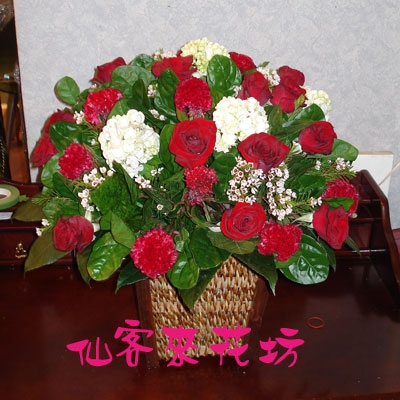 【A-154】盆花精選:藝術盆花、盆花、祝賀藝術盆花
