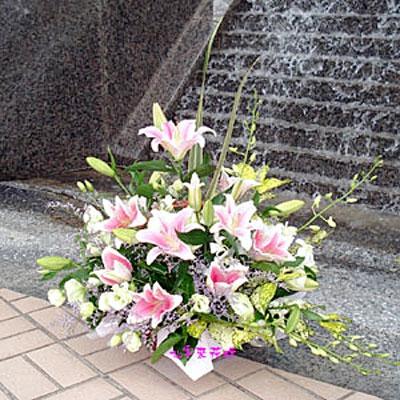 【A-091】盆花精選:藝術盆花、盆花、祝賀藝術盆花