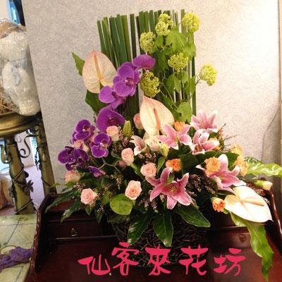 【A-131】盆花精選:藝術盆花、盆花、祝賀藝術盆花