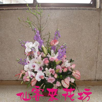 【A-134】盆花精選:藝術盆花、盆花、祝賀藝術盆花