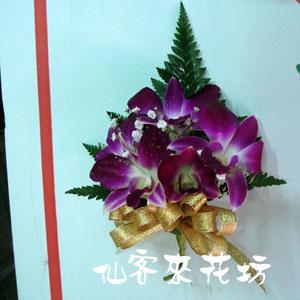 【V-024】胸花石斛蘭胸花