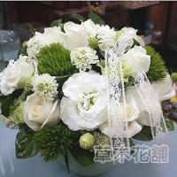 C001精緻盆花會場佈置盆花