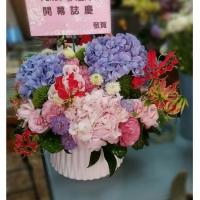 C004大型盆花喜慶會場佈置盆花