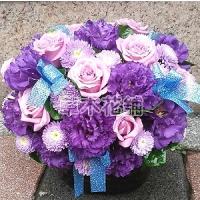 C005精緻盆花喜慶會場佈置盆花
