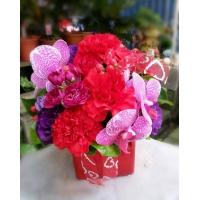 AB005精緻盆花母親節盆花