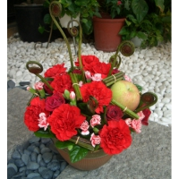 AB007精緻盆花母親節盆花