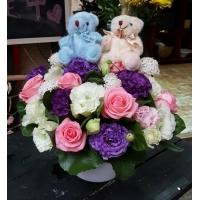 B001熊愛你盆花