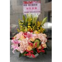 C010精緻盆花喜慶會場佈置盆花