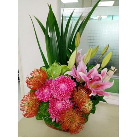 AD003新春喜慶盆花
