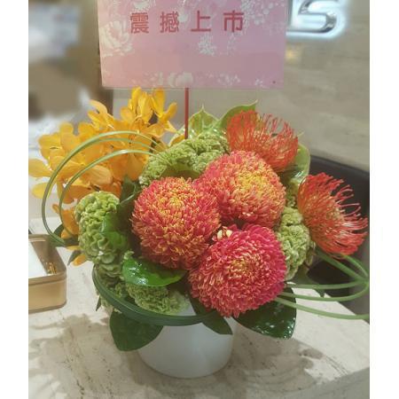 C014精緻盆花喜慶會場佈置盆花