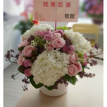 C016精緻盆花喜慶會場佈置盆花