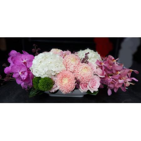 C017精緻盆花喜慶會場佈置盆花