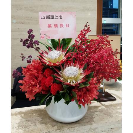 C018精緻盆花喜慶會場佈置盆花