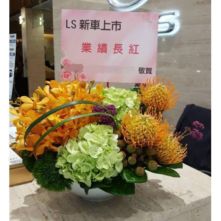 C019精緻盆花喜慶會場佈置盆花