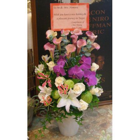 C022精緻盆花喜慶會場佈置盆花