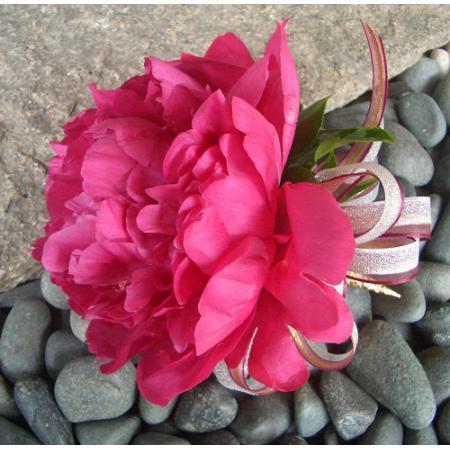 G015胸花-牡丹(桃紅)
