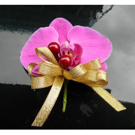 G018胸花-蝴蝶蘭