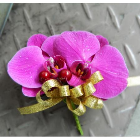 G019胸花-蝴蝶蘭(2朵)
