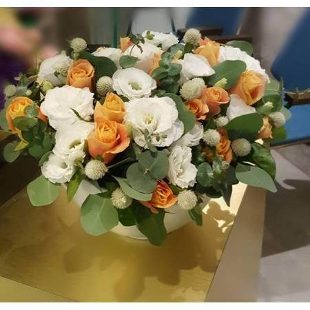 C024精緻盆花喜慶會場佈置盆花