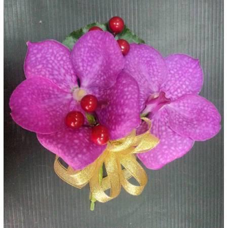 G023胸花-巨輪蘭花(2朵)