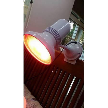 【飛利浦紅外線保暖燈具組-夾式】
