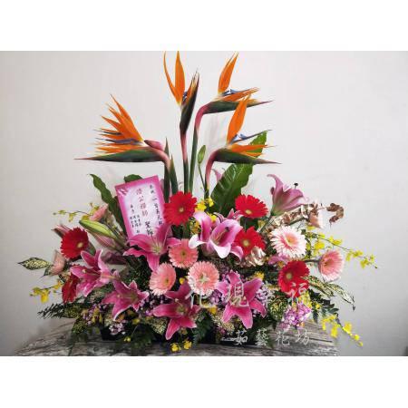KM001[開幕誌慶]花籃盆花