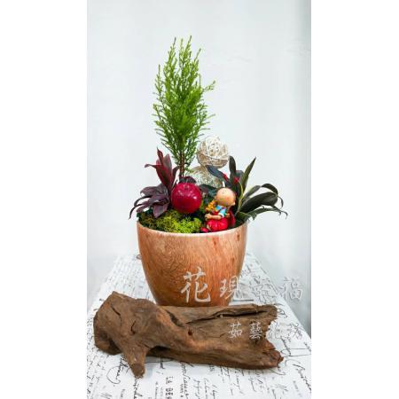 ZU002香柏木組合盆栽