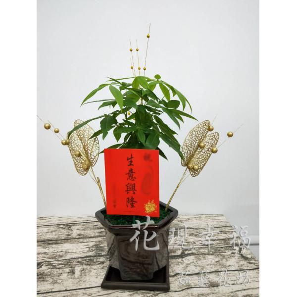 ZU006金雞報喜發財樹