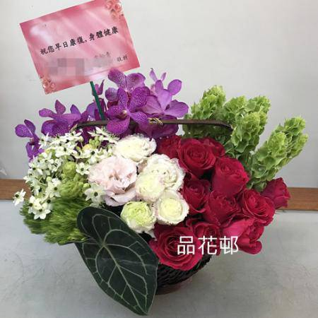 C001祝賀盆花開幕喜慶會場盆花