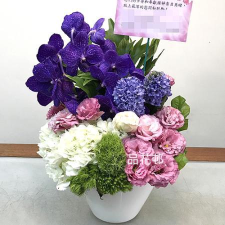 C002祝賀盆花開幕喜慶會場盆花時尚盆花