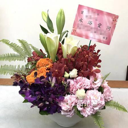 C005鴻圖大展祝賀盆花榮陞喬遷誌慶喜慶會場盆花