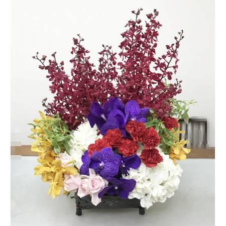 C0016鴻圖大展祝賀盆花榮陞喬遷誌慶喜慶會場盆花
