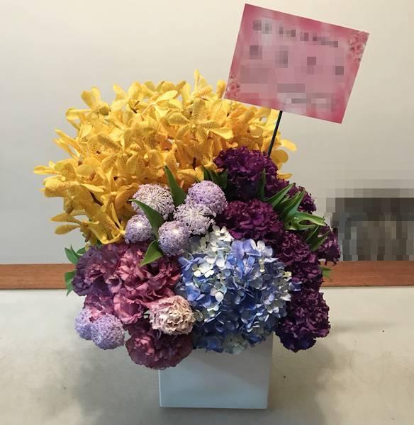 C0020祝賀盆花開幕喜慶會場盆花