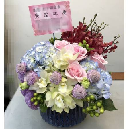 C0024祝賀盆花開幕喜慶會場盆花