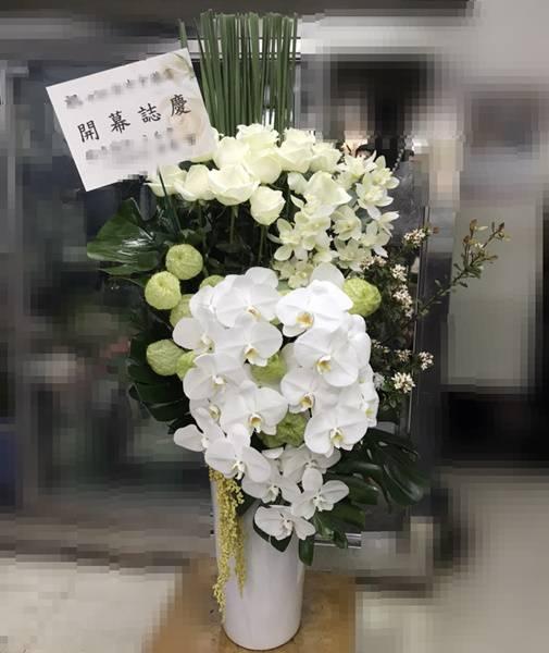 C0025祝賀盆花開幕喜慶會場盆花