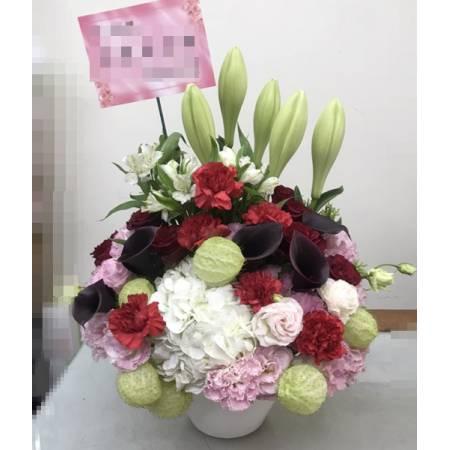 B005母親節盆花