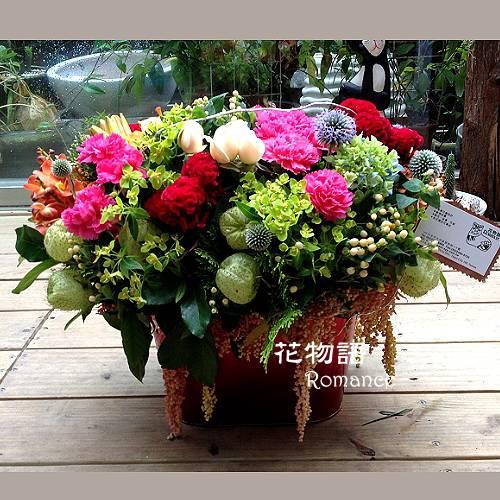 B008開幕喜慶盆花榮陞致賀新居祝賀盆花