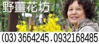 桃園 八德區 花店 野薑花坊 Taoyuan flower shop
